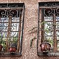 Architecture I Windows Print by Chuck Kuhn