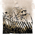 art in the sand series 2 Print by Bob Salo