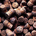 Assorted champagne corks Poster by Garry Gay