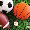 Assortment of sport balls on grass Poster by Sandra Cunningham