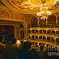 At The Budapest Opera House Print by Madeline Ellis