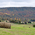 Autumn Bales Print by Jan Amiss Photography