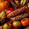 Autumn harvest  Poster by Garry Gay
