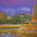 Autumn in Nisqually Poster by David Patterson