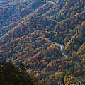 Autumn in the Smoky Mountains Print by Dennis Hedberg