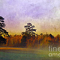 Autumn Morning Mist Print by Judi Bagwell