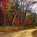 Autumn on Bottomland Road Print by Julie Dant