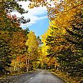 Autumn Scenic Drive Poster by George Oze