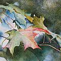Autumn Sparkle Print by Patsy Sharpe