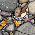Autumn Stones Poster by JQ Licensing