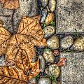 Autumn Texture Poster by Wayne Sherriff