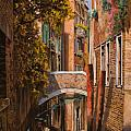 autunno a Venezia by Guido Borelli