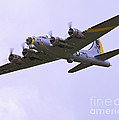 B-17G Liberty Belle approach 8x10 special Poster by Tim Mulina