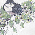 Baby Barn Swallow Poster by Meldra Driscoll