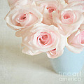 Baby Pink Roses Poster by Lyn Randle
