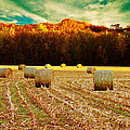 Bales of Autumn Print by Bill Tiepelman