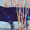 Bamboo Panther Print by Larry  Johnson