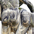 baroque statue - detail - backside Print by Michal Boubin