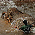 Bath Time In Laos Poster by Bob Christopher
