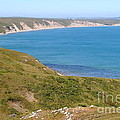 Beautiful Coastline of Point Reyes California . 7D16050 Print by Wingsdomain Art and Photography
