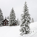 Beautiful winter landscape with trees and house Poster by Matthias Hauser