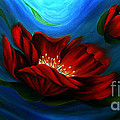 Beauty of Red Flower Poster by Uma Devi