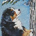bernese Mountain Dog puppy and nuthatch Poster by L A Shepard