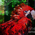 Bird of Exotic Color Print by Christine Mayfield