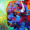 Bison Head II Poster by Marion Rose