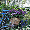 Blue Bike Print by Cheri Randolph