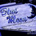 Blue Moon Poster by Perry Webster