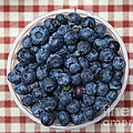 Blueberries - 5D17825 Poster by Wingsdomain Art and Photography