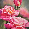 Blushing Roses with Bud by Sharon Freeman