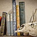 Bone Collector Library Print by Heather Applegate