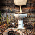 Broken Toilet by Carlos Caetano