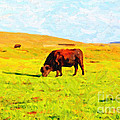 Bull Grazing in the Field Poster by Wingsdomain Art and Photography