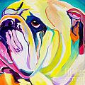 Bulldog - Bully Print by Alicia VanNoy Call