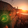 Burst Of Nubble Poster by Emily Stauring