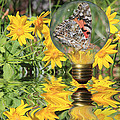 Butterfly In A Bulb II - Landscape Print by Shane Bechler