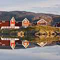 Cabins At Sommaroy, Tromso, Norway Print by David Clapp