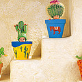 Cactus Pots Print by Anne Geddes
