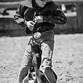 Calf Roper Poster by Michelle Wrighton