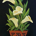 Calla lilies Poster by Jane Landry  Read