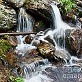 Calypso Cascades White Water Print by Brent Parks