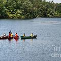 Canoes on lake Print by Blink Images