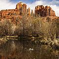 Cathedral Rock Reflections Portrait 1 Print by Darcy Michaelchuk