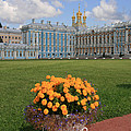 Catherine Palace in Russia Poster by Sharon Kalniz