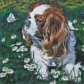 Cavalier King Charles Spaniel with butterfly Print by Lee Ann Shepard