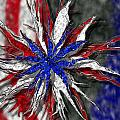 Chaotic Star Project - Take 3 Print by Scott Hovind