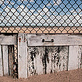 Charlotte Beach Fence Poster by Peter J Sucy